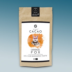 Cacao e matcha organic powder, orange taste, Orange fox