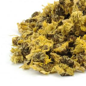 Chrysantemum floral infusion