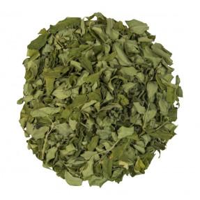 Moringa, leaf