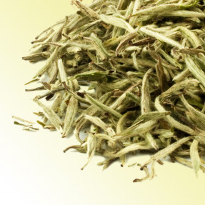 Gushan Silver Needles Chinese white tea