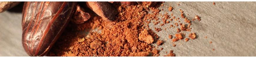 Praline e cioccolatini